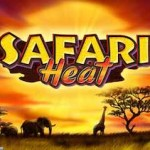 safari heat novomatic