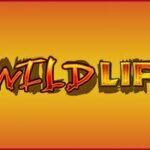 The Wild Life Slot vlt online