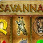 Savanna slot vlt online